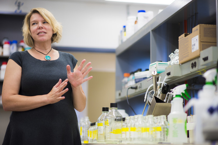 Microbiologist Lisa Stein is developing a bacteria with the potential to close the loop on Alberta's legacy energy system. Photo credit: John Ulan.